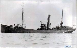 S.T. Diana H453