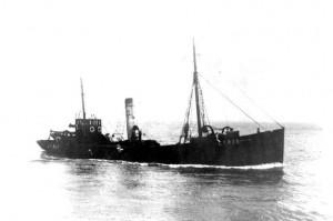 S.T. Portia GY828