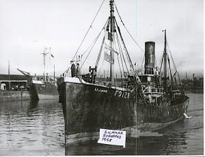 S.T. Lilamar FD128