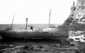 S.T. Pintail H982