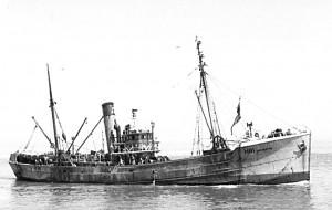 S.T. Achroite H81