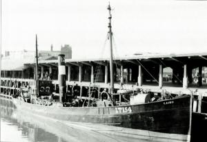 S.T. Cairo H550