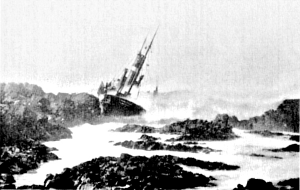 Cormoran ashore at Kilchiaran Bay, Rinns of Islay