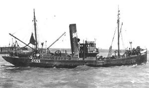 S.T. Drusilla A133