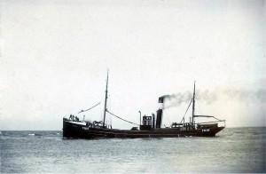 S.T. Swan FD116