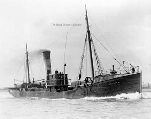 S.T. Hercules H771