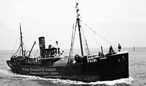 S.T. Irvana FD181