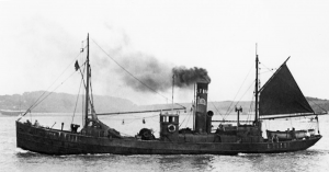 S.T. Kipper LT1111