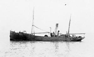 S.T. Majestic H444