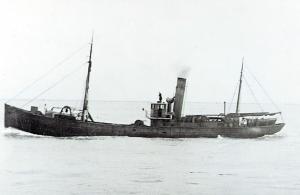 S.T. Swan II LO47