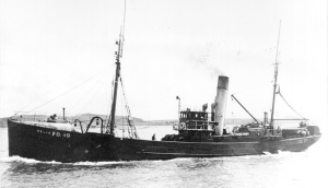 S.T. Velia FD49