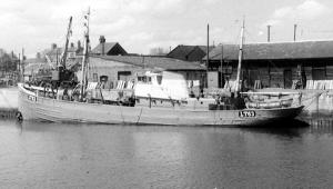 S.T. Warbler LO251