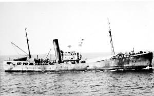 S.T. Westella FD318