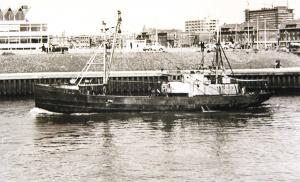 S.T. Kipper LT1111 as Zeehan