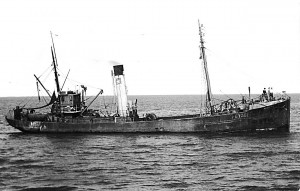 S.T. Novelli GY361