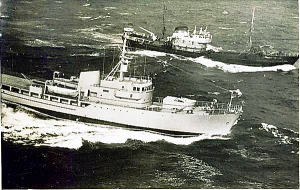 S.T. Brandur GY111