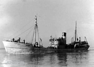 S.T. Borella H240