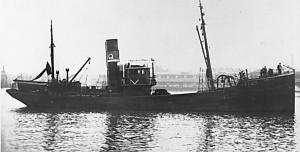 S.T. Commitatus GY228